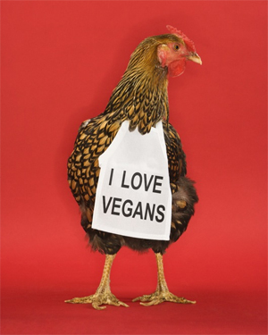 http://1111now.com/wordpress/wp-content/uploads/2010/01/i-love-vegans.jpg