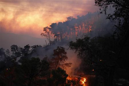 Israel Forest Fire - December 2, 2010
