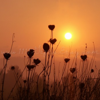 Sunrise Over Eitan Mountain, Israel * Nature Photography Download