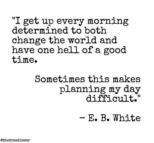 I get up every morning determined to both change the world and have one hell of a good time. Sometimes this makes planning my day difficult. E. B. White