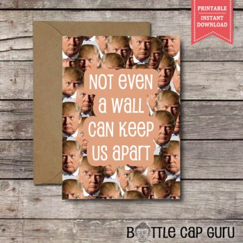 Not Even a Wall Can Keep Us Apart Valentine's Day Card