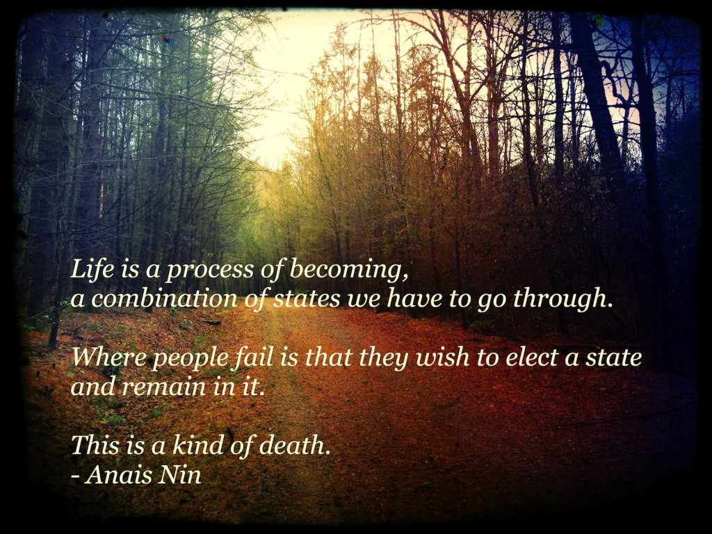 life is a process of becoming anais nin